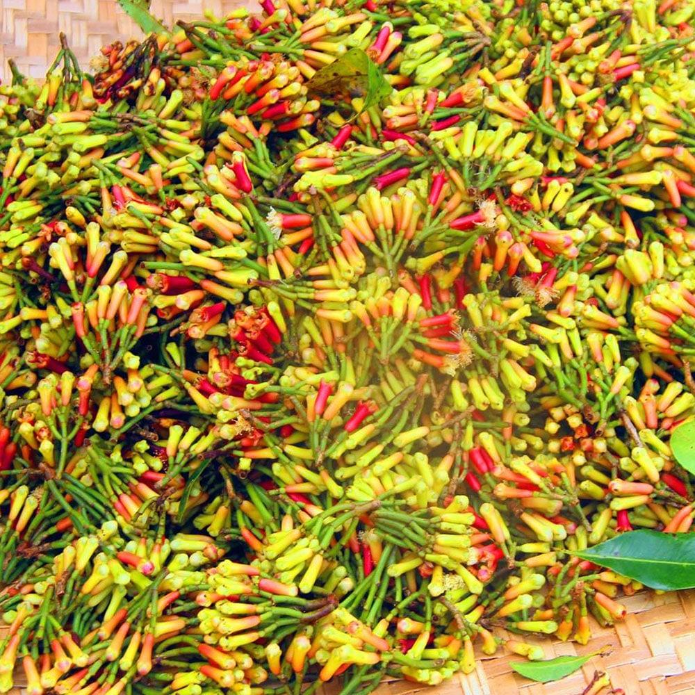 Clous de Girofle de Madagascar 30 gr - Epiceslekanto
