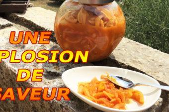 Cuisine aux épices de Madagascar