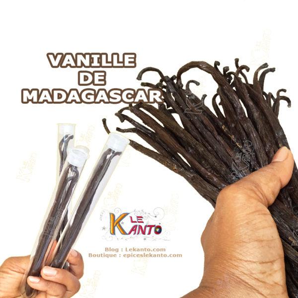 La vanille de Madagascar